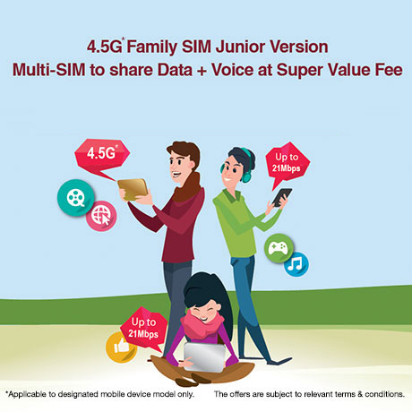 Data + Voice Sharing (Junior Version)